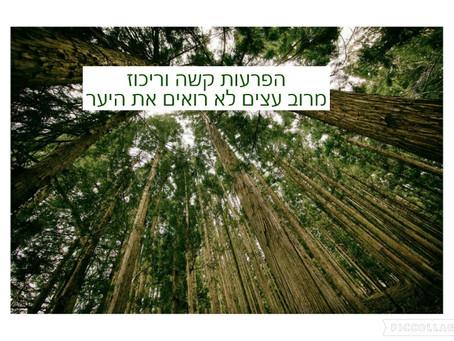 הפרעות קשב וריכוז אצל מבוגרים - מרוב עצים לא רואים את היער.