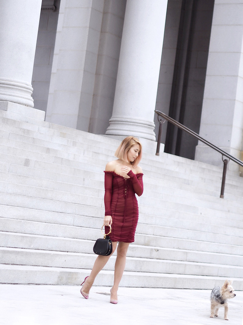 Majorelle Burgundy Dress | Lam in Louboutins