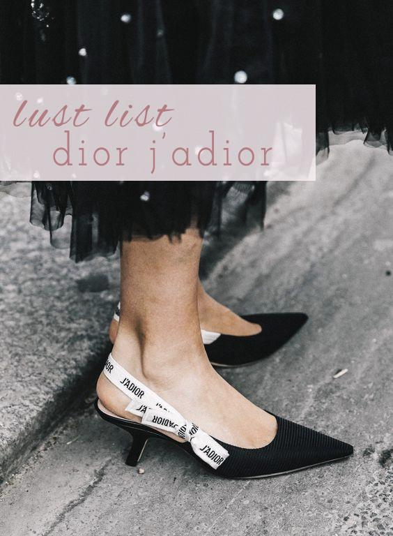 Dior J'Adior   Lam in Louboutins