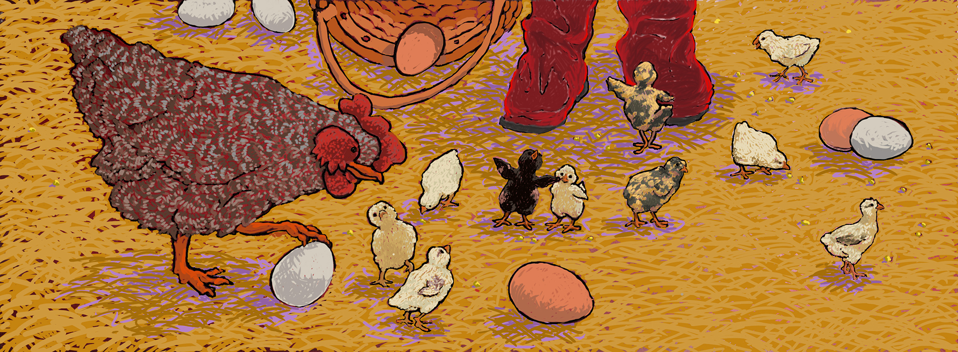 Ten Chicks