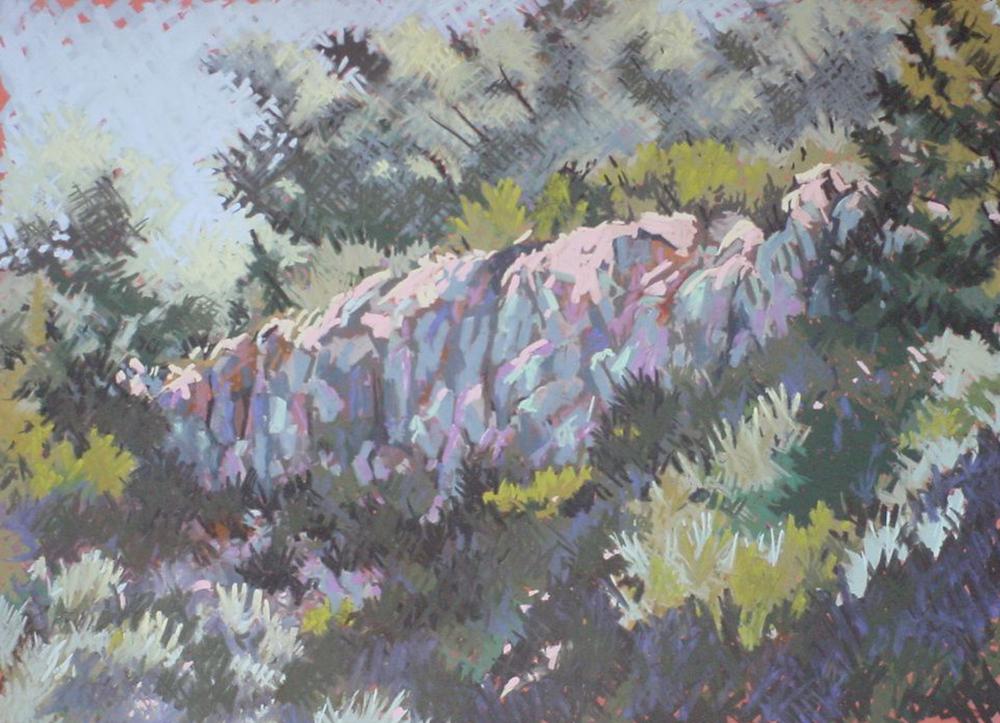 New York Canyon Rockshelter