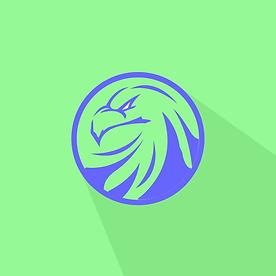 New College Logo IG DP.png