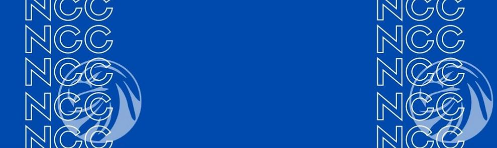 Screen Shot 2020-06-10 at 11.57.13 PM.pn