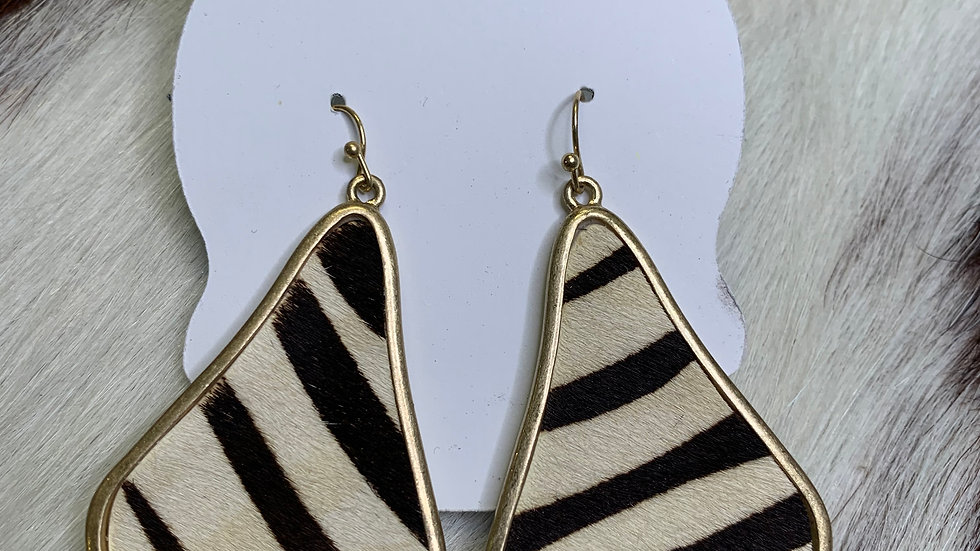 Gold Trim Zebra Earrings