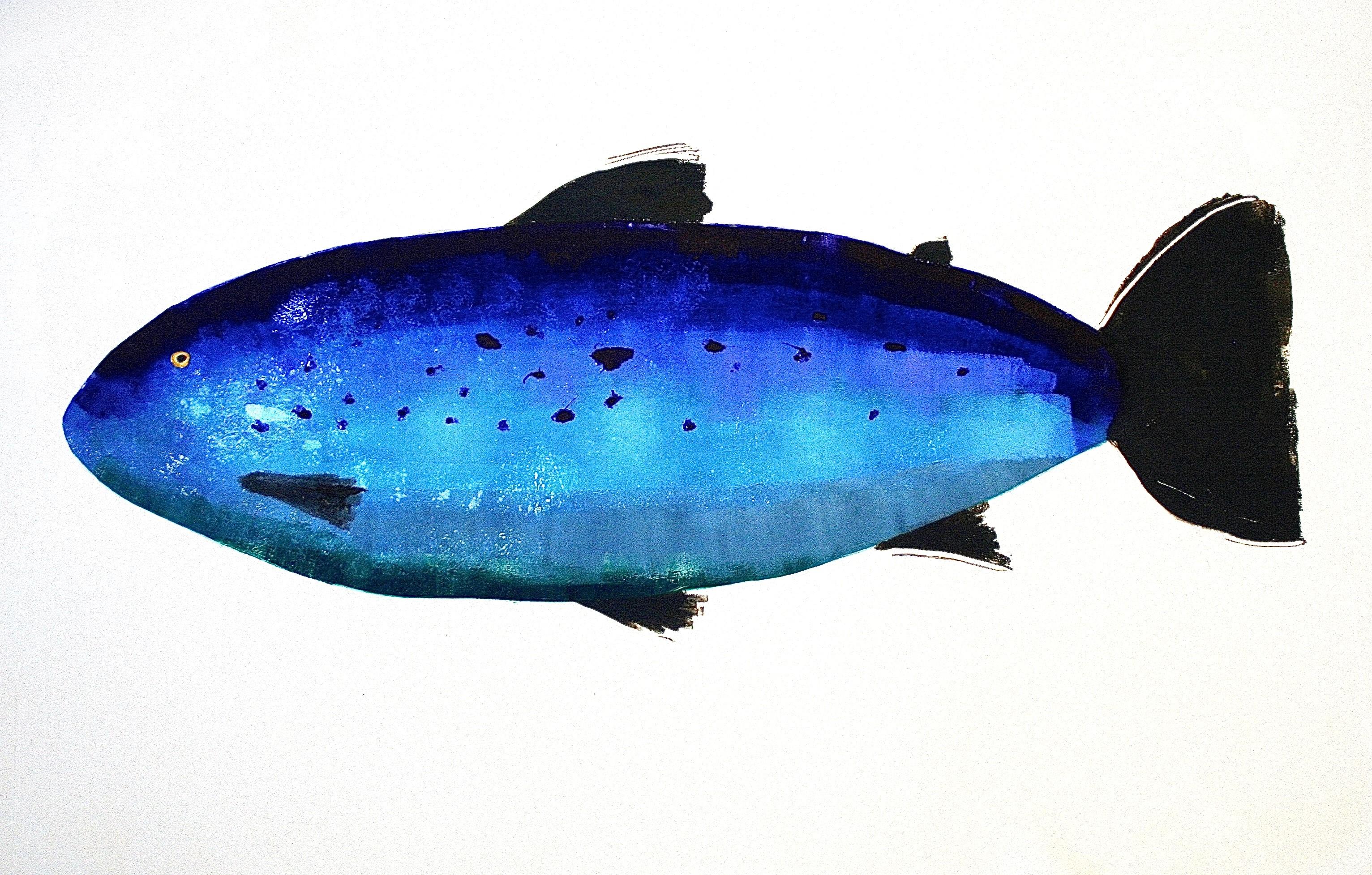 MBW Fish 18