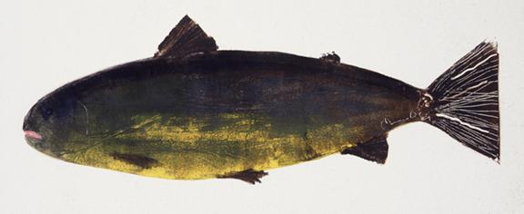 MBW Fish 8