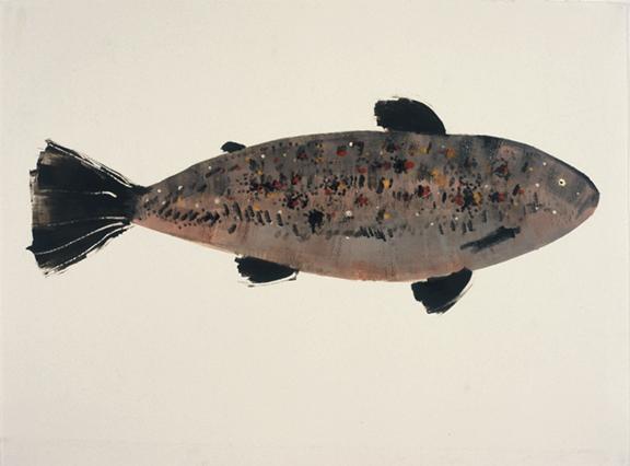 MBW Fish 14