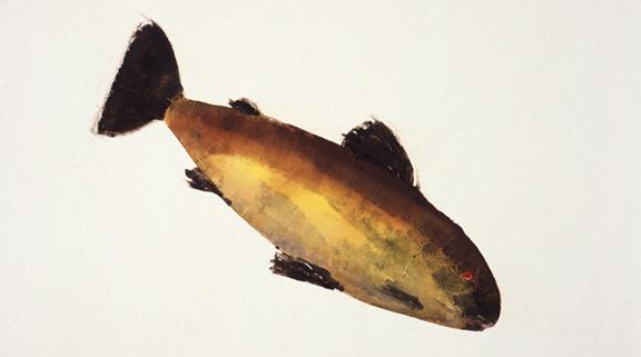 MBW Fish 9