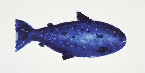 MBW Fish 3