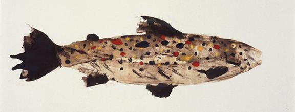 MBW Fish 12