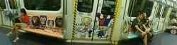 molly pattern on train.JPG