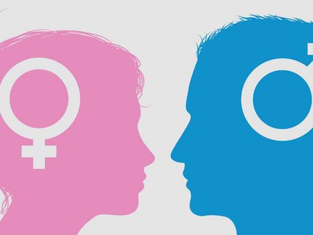 Cérebro Masculino vs. Cérebro Feminino