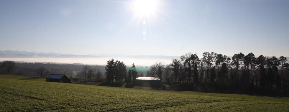 Blick ins Nebelmeer.