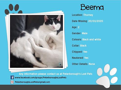 Beema