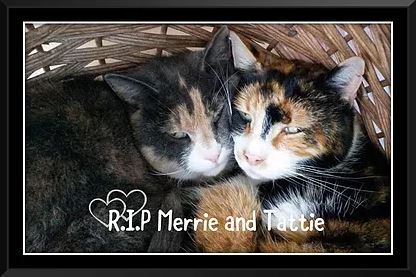 Merrie and Tattie