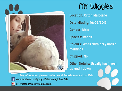 Mr Wiggles