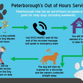 Peterborough Out of Hours Service