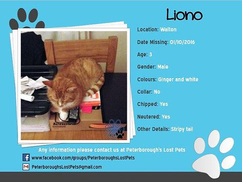 Liono