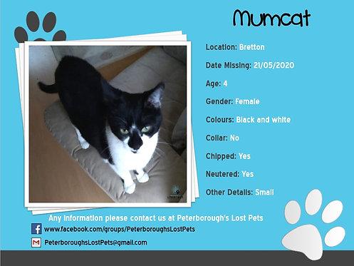 Mumcat