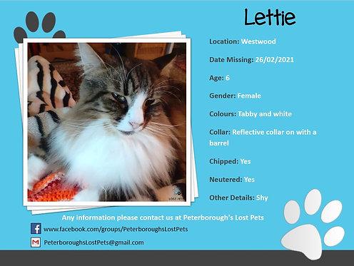 Lettie