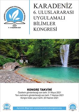 Sinop Poster_002.png