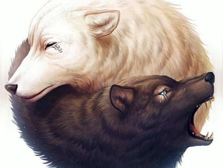 Les deux loups...