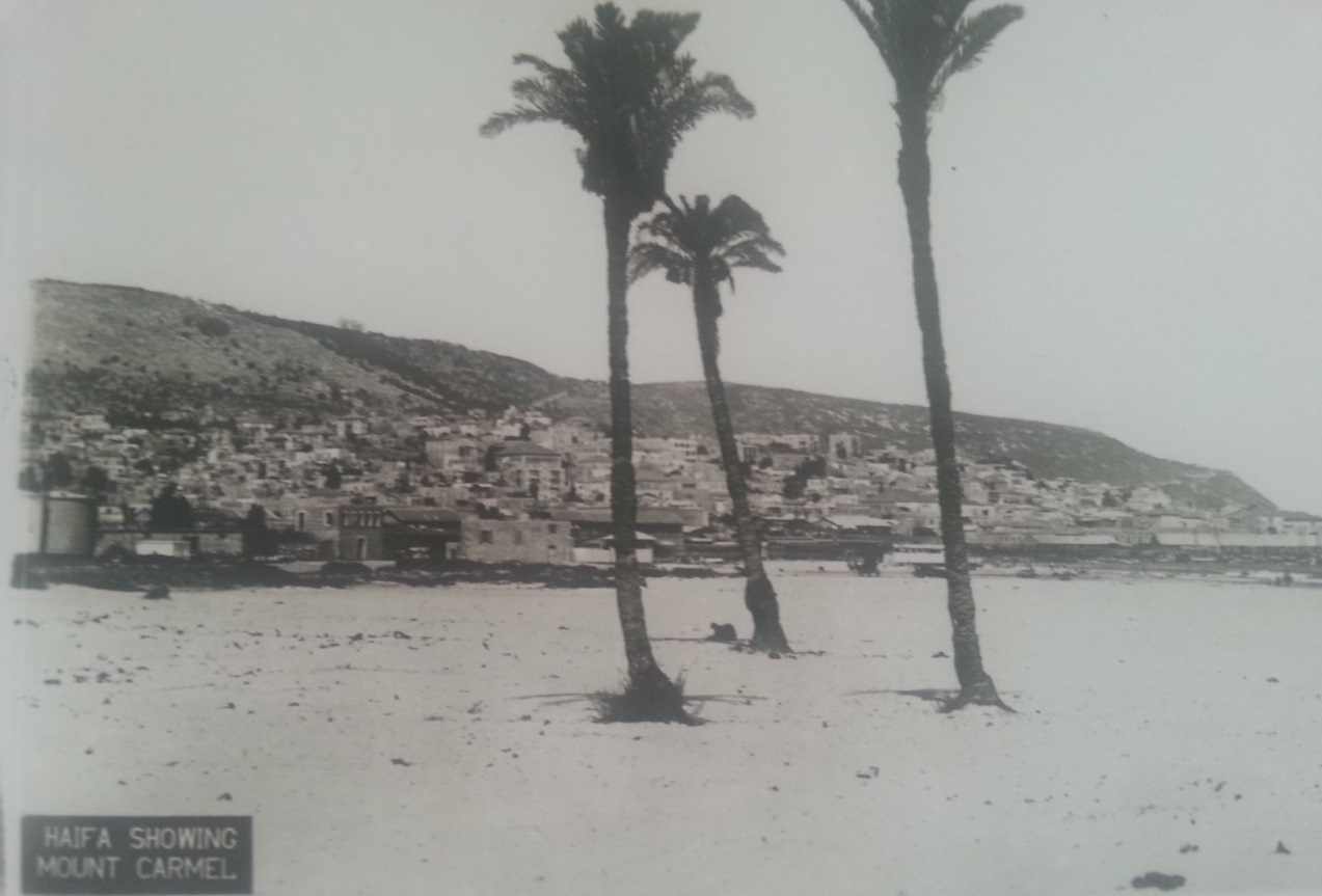 Haifa showing mount Carmel