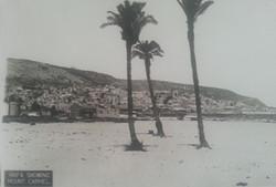 Haifa showing mount Carmel