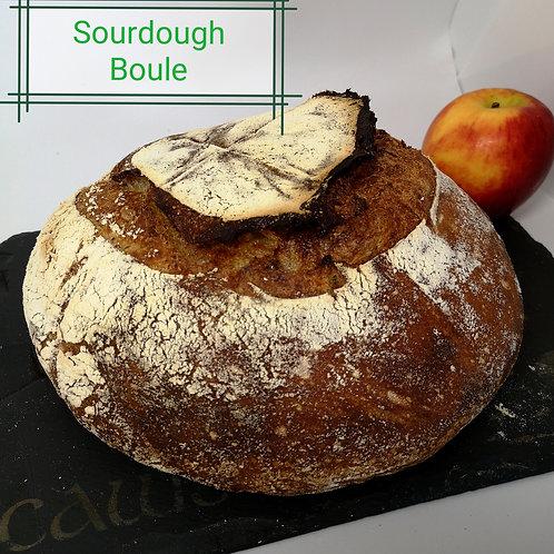 Sourdough Boule