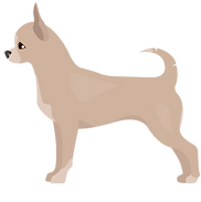 KPG_M_A_little dog looking left-02.png