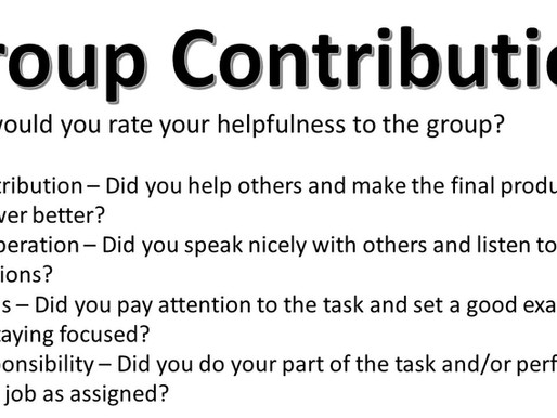 Group Contribution Reflection