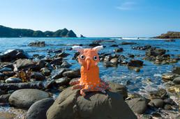 象タコ(深海タコオレンジ)