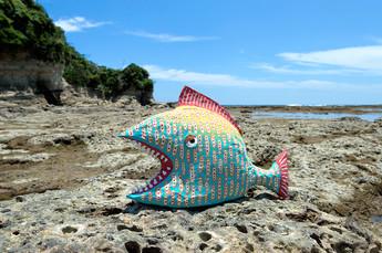 ガオガオ魚