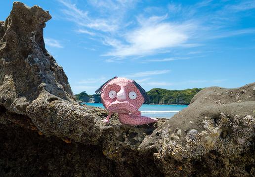 ピンクのおやじ深海魚