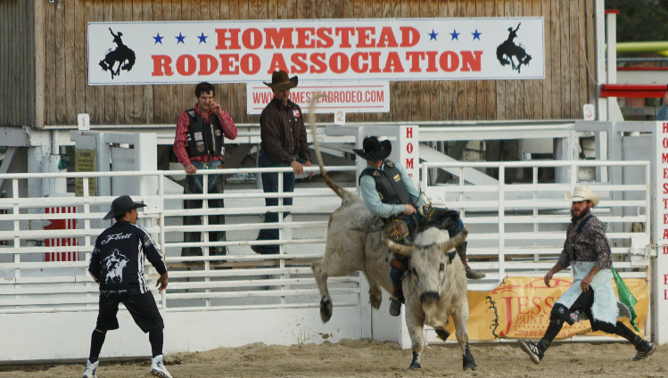 Our first rodeo!