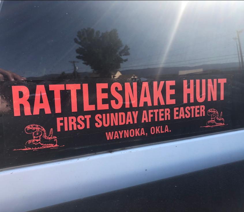 rattlesnake hunting time
