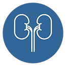 Nephrology_icon.png