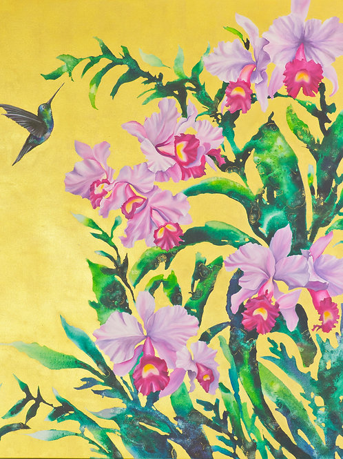 Hummingbird and Orchids