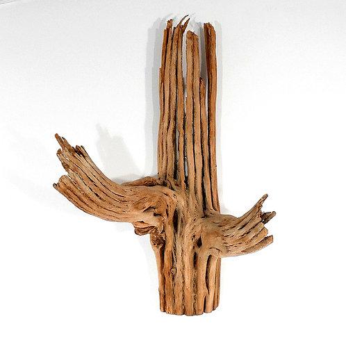 Saguaro Cactus Skeleton