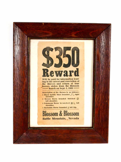 Authentic 1909 Old West Reward Poster