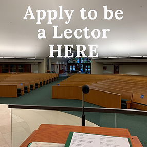Apply Lector.png