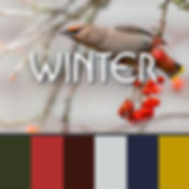 COLOR_SCHEME_WINTER.jpg
