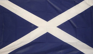 Our Saltire doesn't belong to Nationalists - Andrew Skinner
