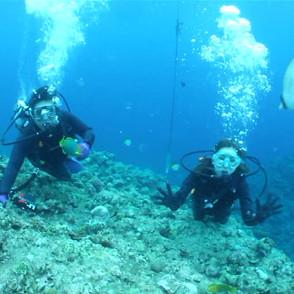 地形探検ダイビング