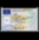 icona scarico carta conducente.png