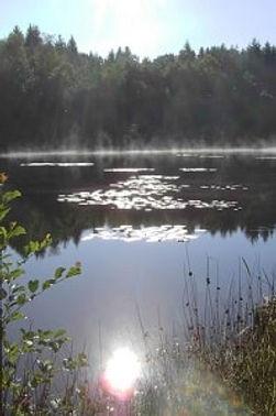 Meertje, duizend meren gebied, Frankrijk, waterlelie
