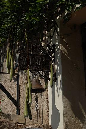 Moulin Begeot, Blauwe regen, zaden, welkom