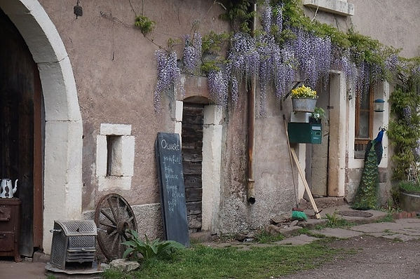Boerderij, blauwe regen, pauw, Moulin Begeot, Frankrijk