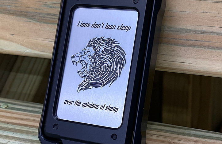 LIONS AND SHEEP.jpg