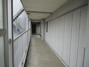 Fビル廊下床シート 施工前.JPG